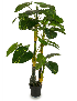 PLANTA ARTIFICIAL C/2 TRONCOS 130CM - 28225